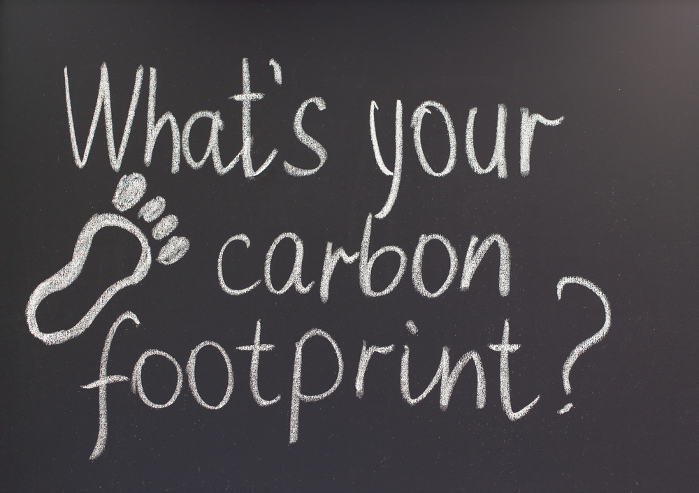 Carbon conscious: How energy efficient is your school?