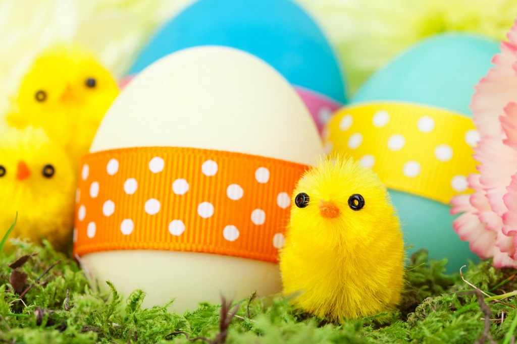 6 things to do before schools break up for Easter